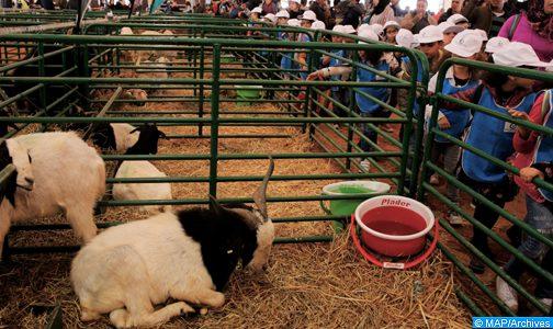 إلغاء تنظيم الدورة ال15 للمعرض الدولي للفلاحة بالمغرب