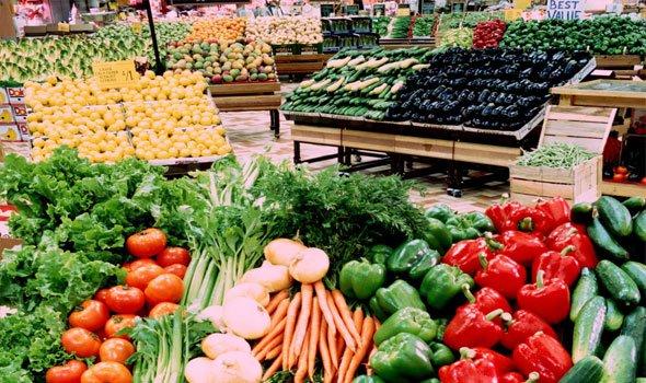 صادرات المغرب من الخضر نحو اوروبا في ارتفاع