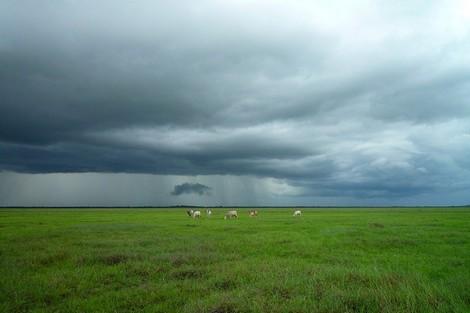 توقعات الأرصاد الجوية  لطقس اليوم الاثنين