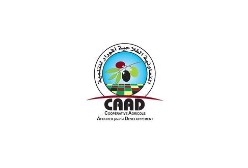 تصميم شعار شركة او جمعية ا مؤسسة
